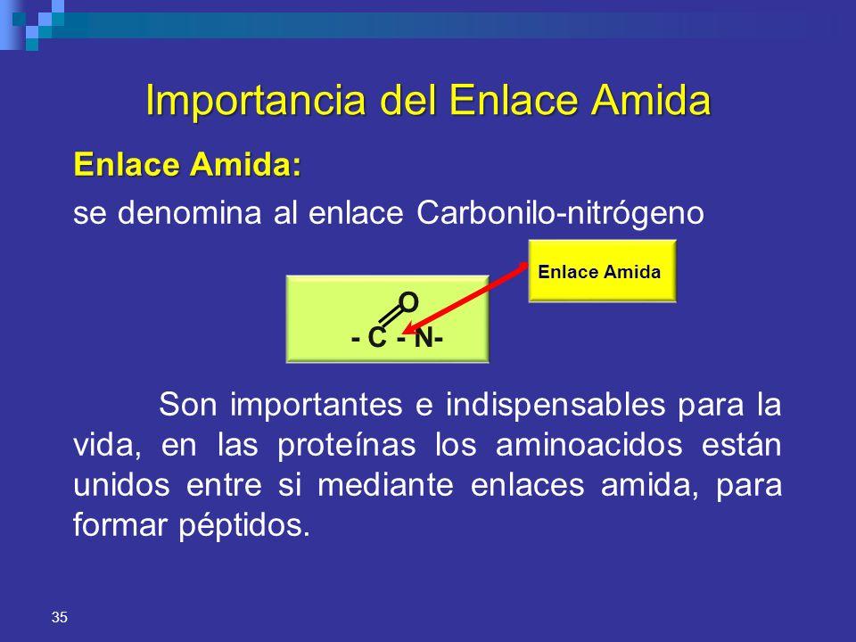 35 Importancia del Enlace Amida Enlace Amida: se denomina al enlace Carbonilo-nitrógeno Son importantes e indispensables para la vida, en las proteína