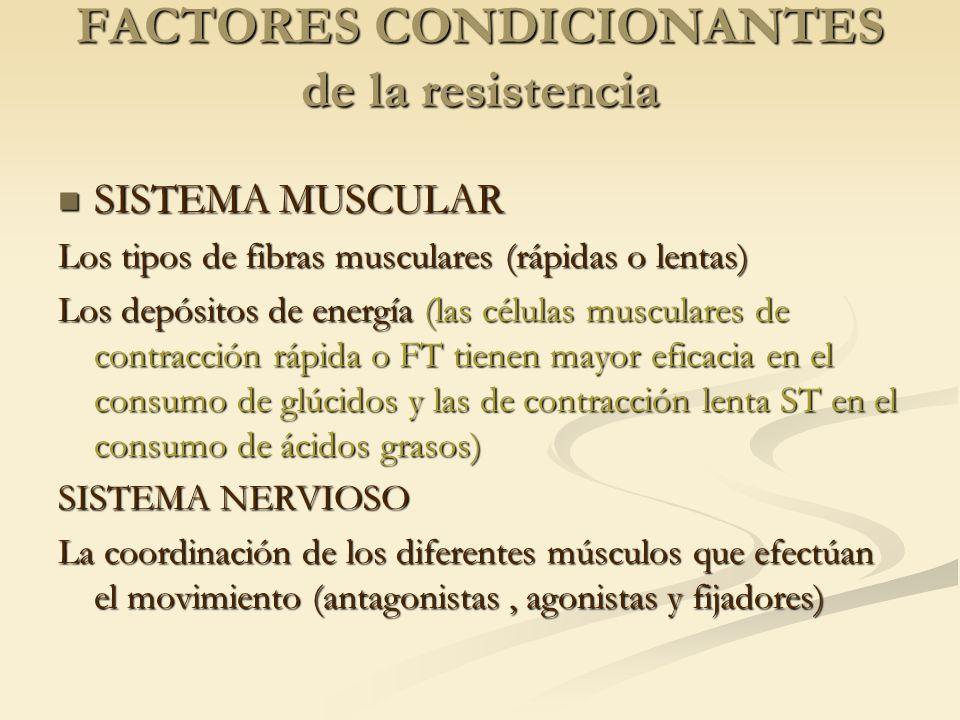 FACTORES CONDICIONANTES de la resistencia SISTEMA MUSCULAR SISTEMA MUSCULAR Los tipos de fibras musculares (rápidas o lentas) Los depósitos de energía