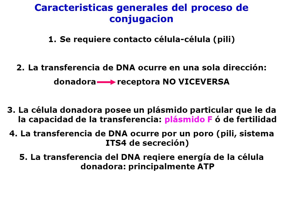 Caracteristicas generales del proceso de conjugacion 1.Se requiere contacto célula-célula (pili) 2.La transferencia de DNA ocurre en una sola direcció