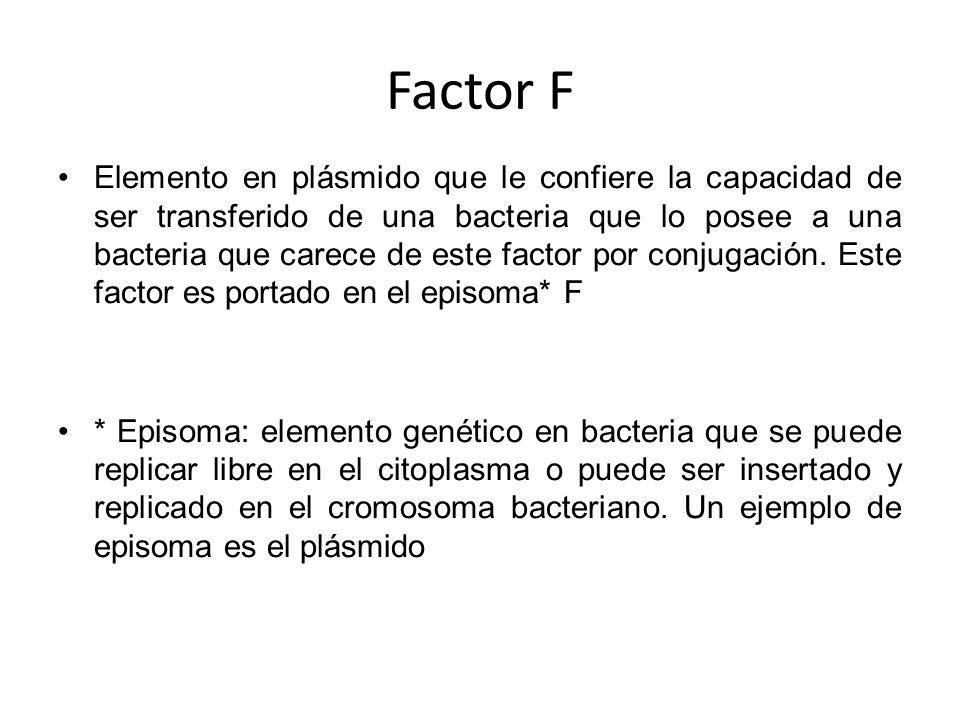 Factor F Elemento en plásmido que le confiere la capacidad de ser transferido de una bacteria que lo posee a una bacteria que carece de este factor po
