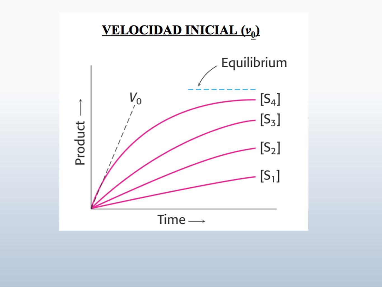ProcedimientoVolumen de la fracción (mL) Proteína total en la fracción (mg) Actividad enzimatica (µmol/min mL) Actividad total Unidades totales (µmol/min ) Actividad especifica (µmol/min mg ) Actividad específica total (µmol/min mg totales ) Veces de purificación Rendimiento TABLA DE PURIFICACIÓN