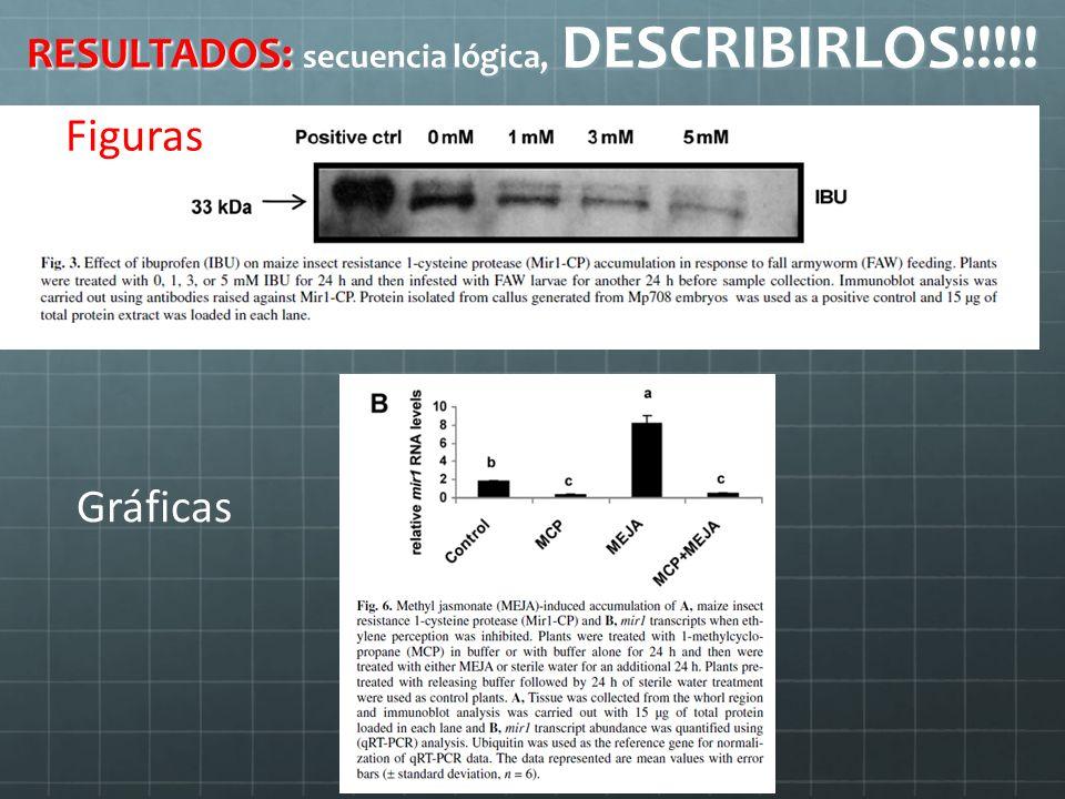 RESULTADOS: secuencia lógica, DESCRIBIRLOS!!!!! Figuras Gráficas