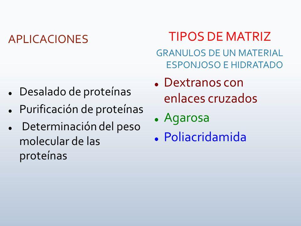 APLICACIONES Desalado de proteínas Purificación de proteínas Determinación del peso molecular de las proteínas TIPOS DE MATRIZ GRANULOS DE UN MATERIAL