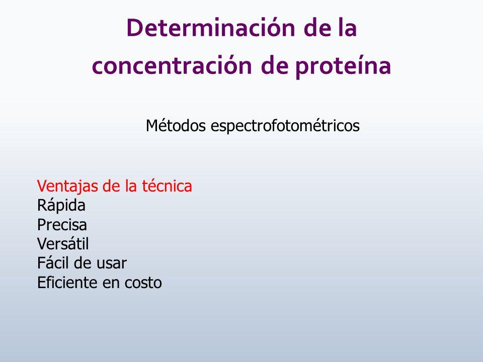 Determinación de la concentración de proteína Métodos espectrofotométricos Ventajas de la técnica Rápida Precisa Versátil Fácil de usar Eficiente en c
