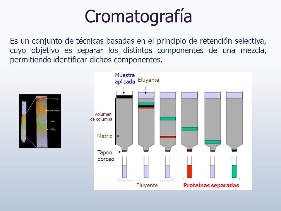 Cromatografía Es un conjunto de técnicas basadas en el principio de retención selectiva, cuyo objetivo es separar los distintos componentes de una mez