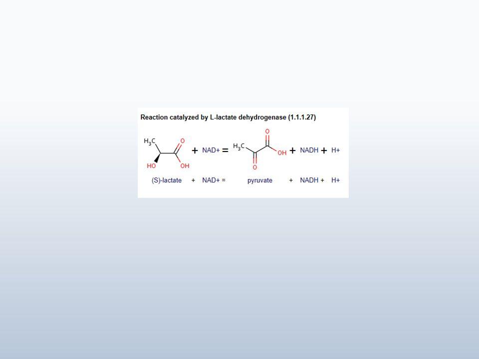 En esta práctica se utilizará el gel dextrano.