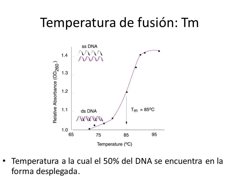 Temperatura de fusión: Tm Temperatura a la cual el 50% del DNA se encuentra en la forma desplegada.