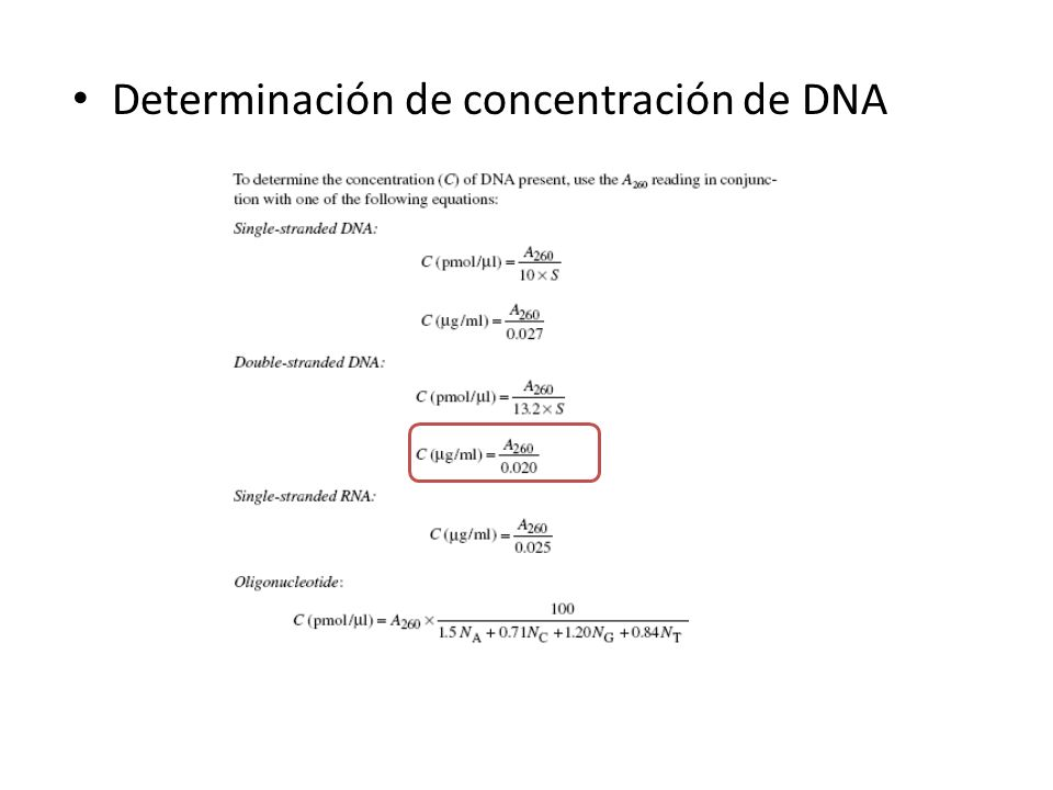 Determinación de concentración de DNA