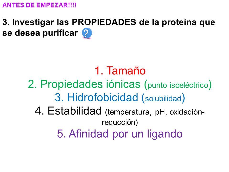 ANTES DE EMPEZAR!!!.3. Investigar las PROPIEDADES de la proteína que se desea purificar 1.