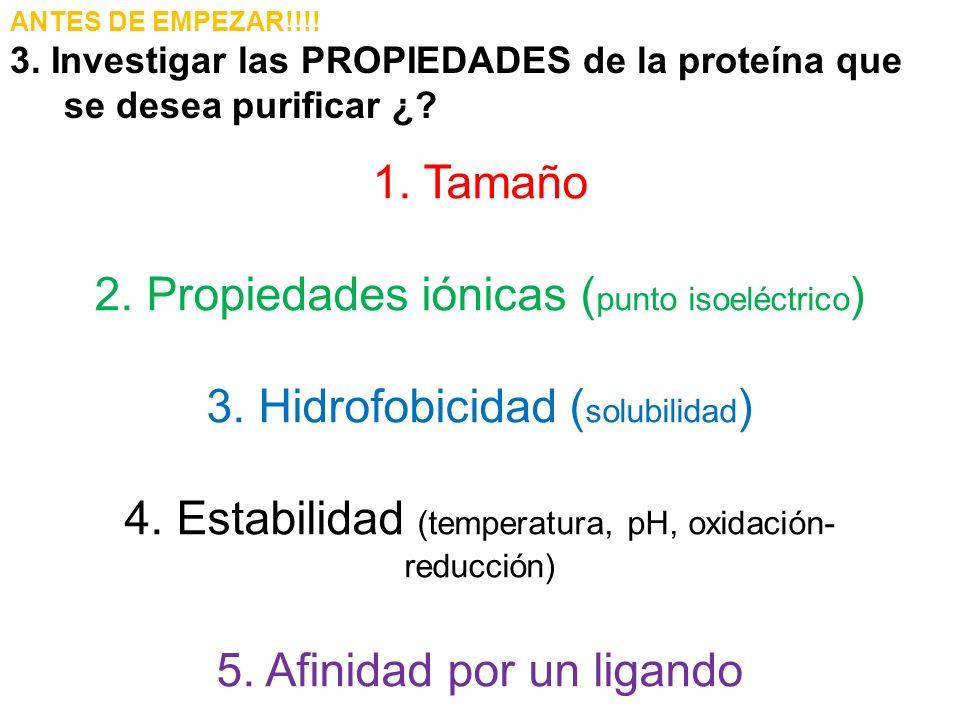 ANTES DE EMPEZAR!!!! 3. Investigar las PROPIEDADES de la proteína que se desea purificar ¿? 1. Tamaño 2. Propiedades iónicas ( punto isoeléctrico ) 3.