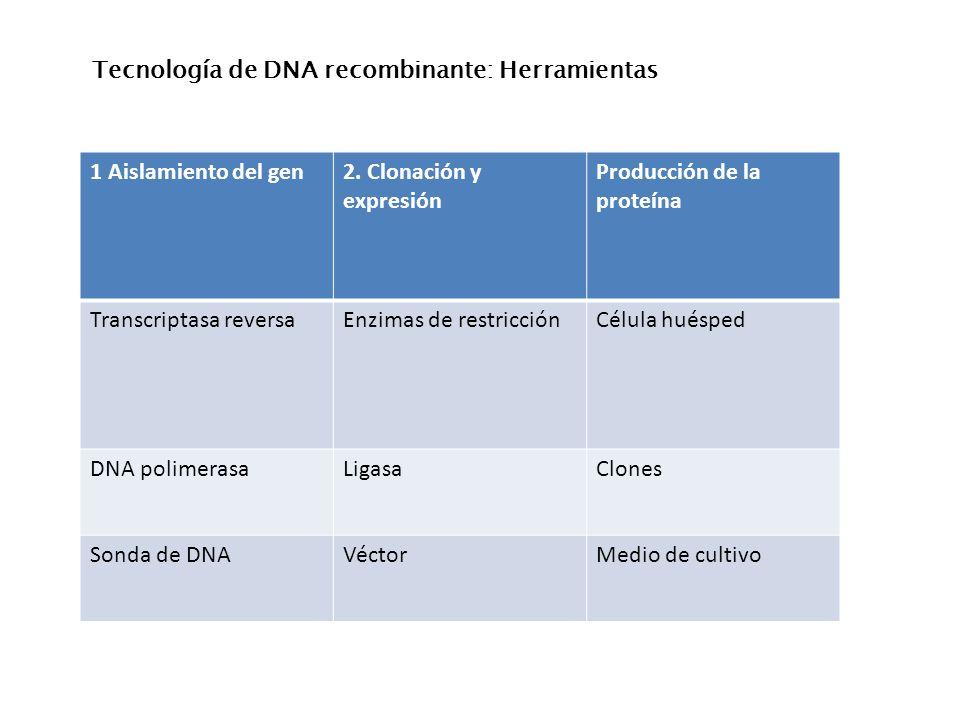 Tecnología de DNA recombinante: Herramientas 1 Aislamiento del gen2. Clonación y expresión Producción de la proteína Transcriptasa reversaEnzimas de r
