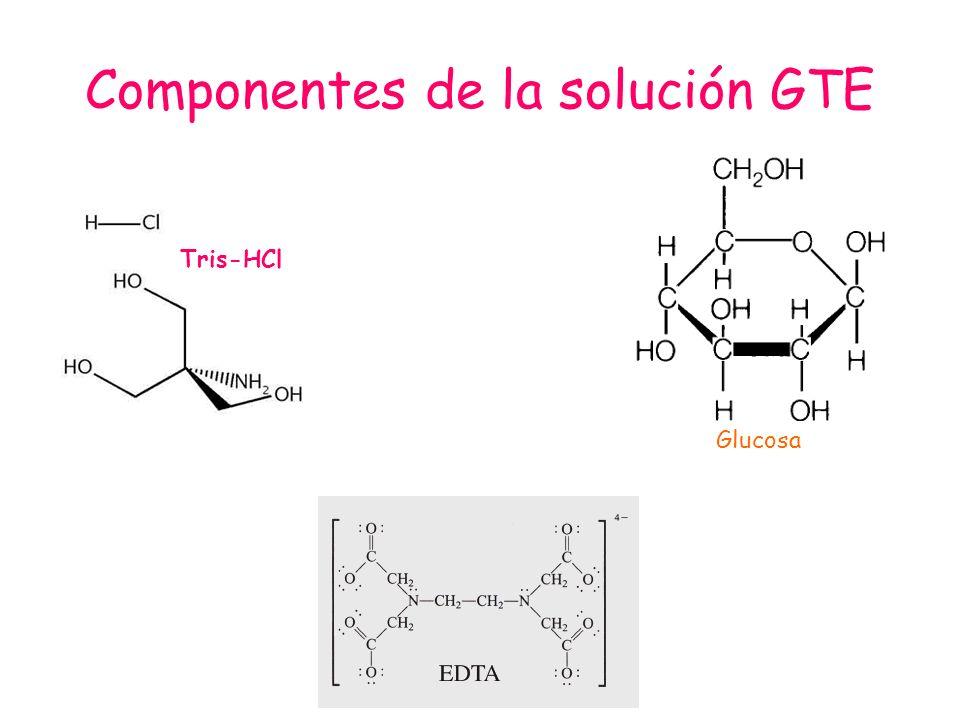 Componentes de la solución GTE Tris-HCl Glucosa