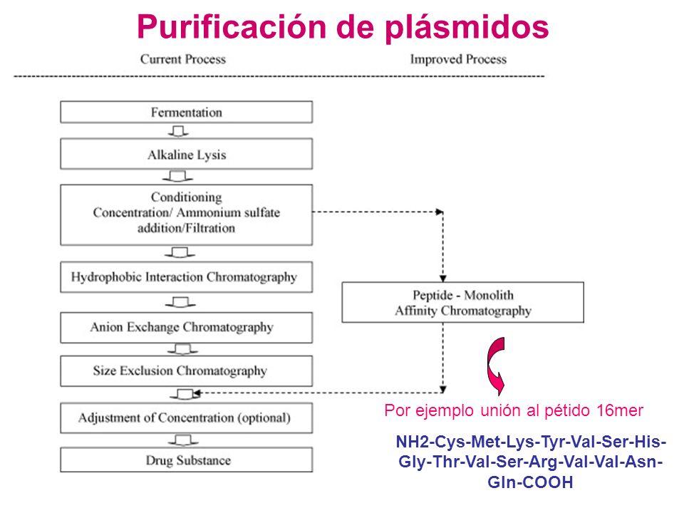 Purificación de plásmidos Por ejemplo unión al pétido 16mer NH2-Cys-Met-Lys-Tyr-Val-Ser-His- Gly-Thr-Val-Ser-Arg-Val-Val-Asn- Gln-COOH