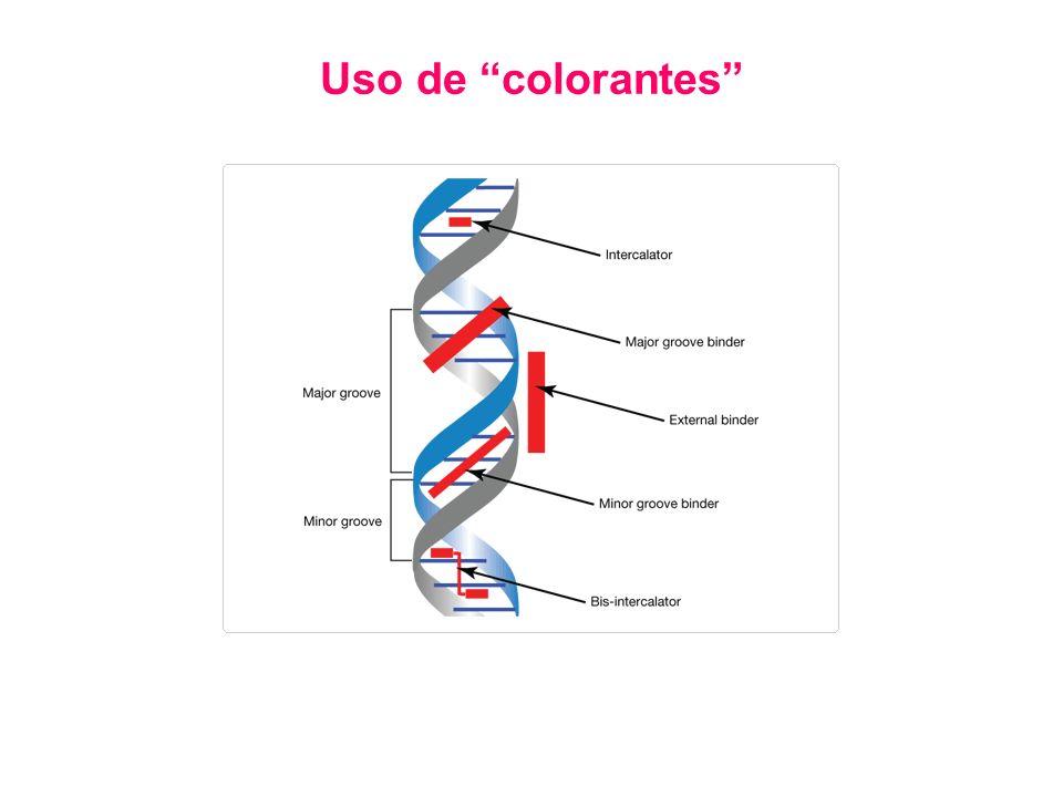 Uso de colorantes