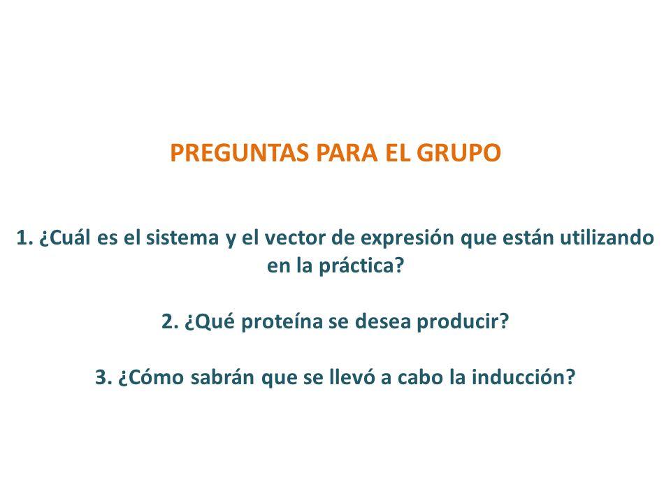 PREGUNTAS PARA EL GRUPO 1. ¿Cuál es el sistema y el vector de expresión que están utilizando en la práctica? 2. ¿Qué proteína se desea producir? 3. ¿C