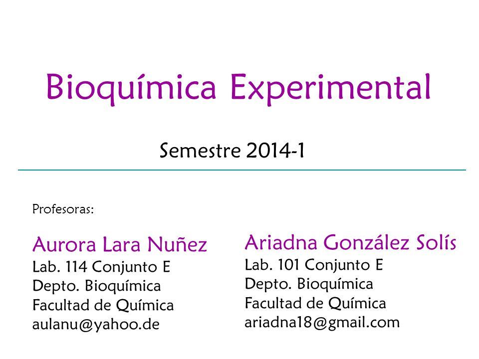 Bioquímica Experimental Semestre 2014-1 Profesoras: Aurora Lara Nuñez Lab. 114 Conjunto E Depto. Bioquímica Facultad de Química aulanu@yahoo.de Ariadn