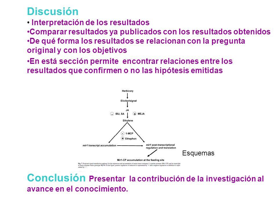 Discusión Interpretación de los resultados Comparar resultados ya publicados con los resultados obtenidos De qué forma los resultados se relacionan co