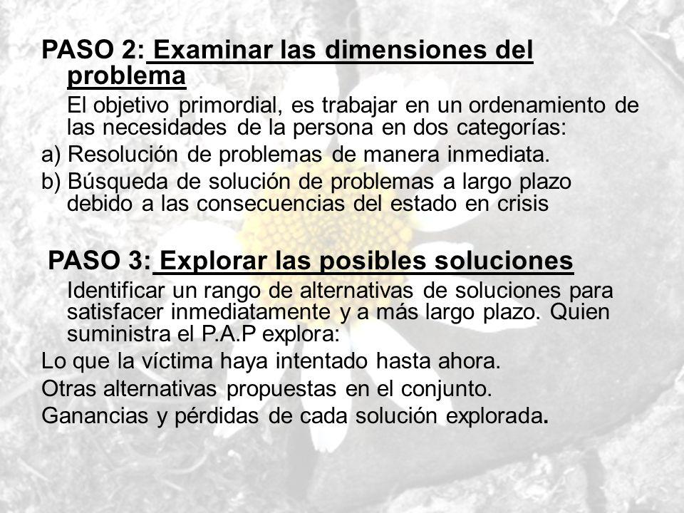 PASO 2: Examinar las dimensiones del problema El objetivo primordial, es trabajar en un ordenamiento de las necesidades de la persona en dos categoría