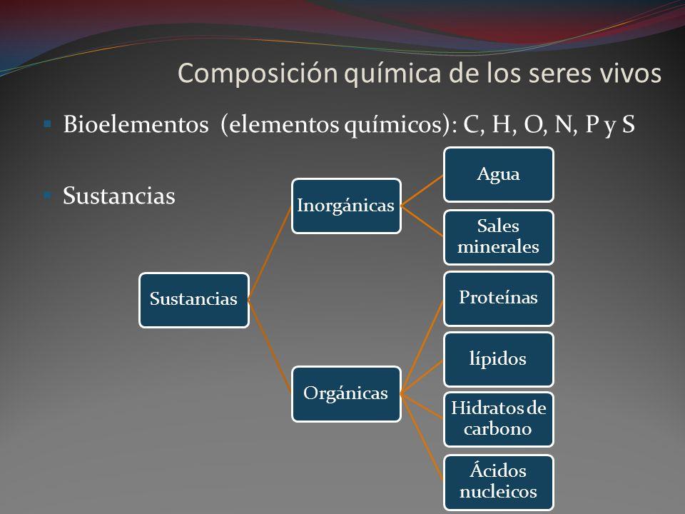 Composición química de los seres vivos Bioelementos (elementos químicos): C, H, O, N, P y S Sustancias InorgánicasAgua Sales minerales OrgánicasProteí