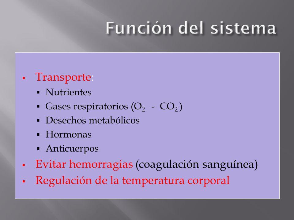 Transporte: Nutrientes Gases respiratorios (O 2 - CO 2 ) Desechos metabólicos Hormonas Anticuerpos Evitar hemorragias (coagulación sanguínea) Regulaci
