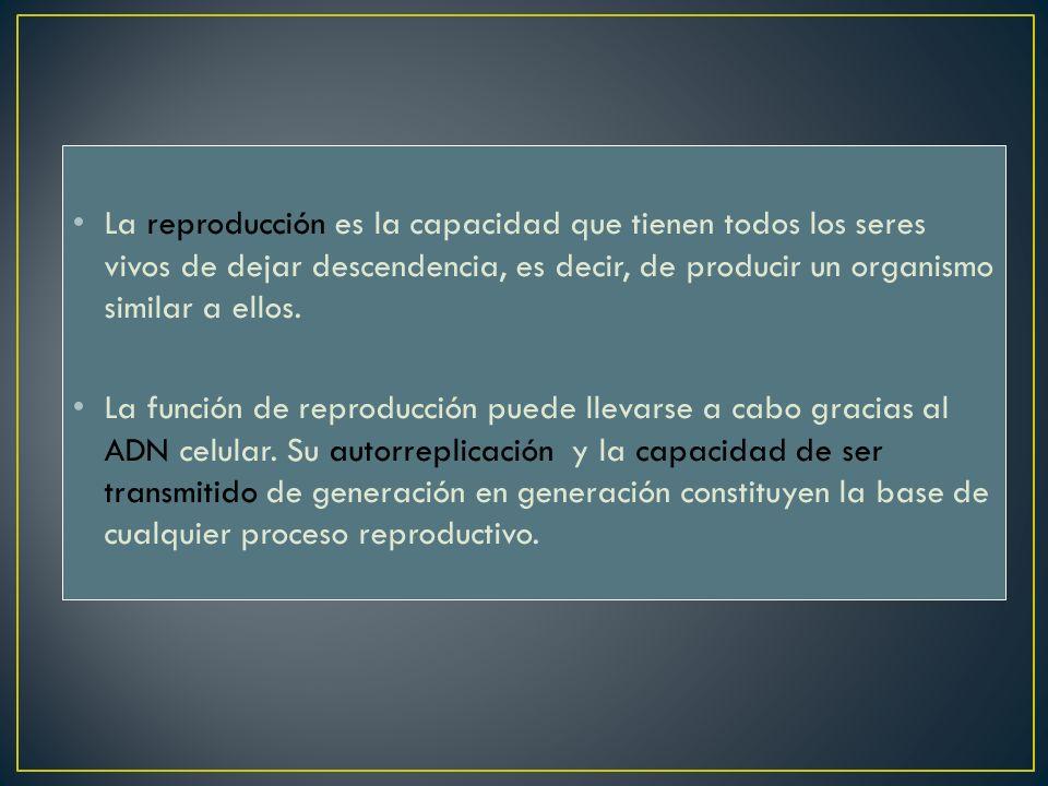 La reproducción es la capacidad que tienen todos los seres vivos de dejar descendencia, es decir, de producir un organismo similar a ellos. La función