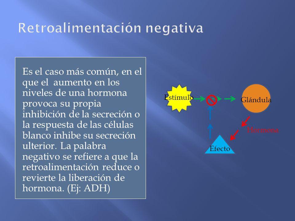 Es el caso más común, en el que el aumento en los niveles de una hormona provoca su propia inhibición de la secreción o la respuesta de las células bl