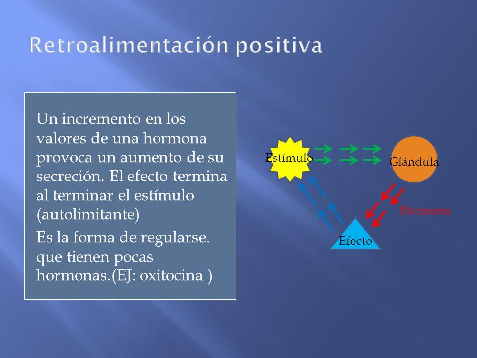 Un incremento en los valores de una hormona provoca un aumento de su secreción. El efecto termina al terminar el estímulo (autolimitante) Es la forma