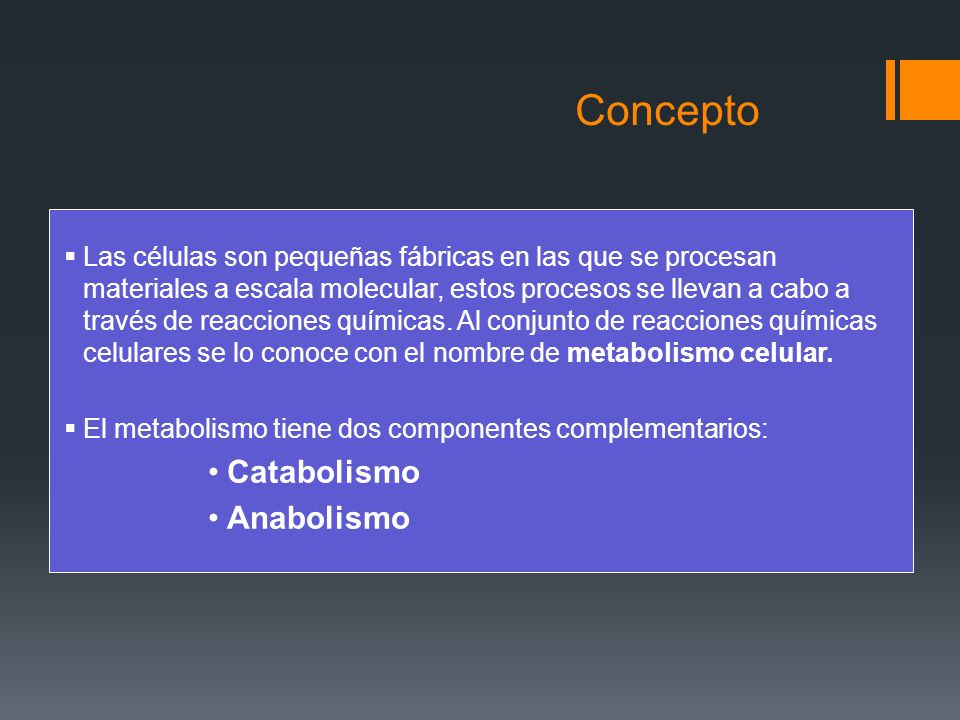 Funciones del metabolismo Obtener energía química utilizable por la célula, que se almacena en forma de ATP.