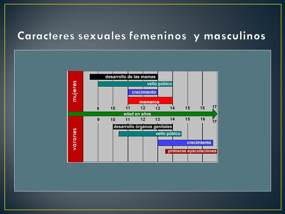 mujeres varones menarca