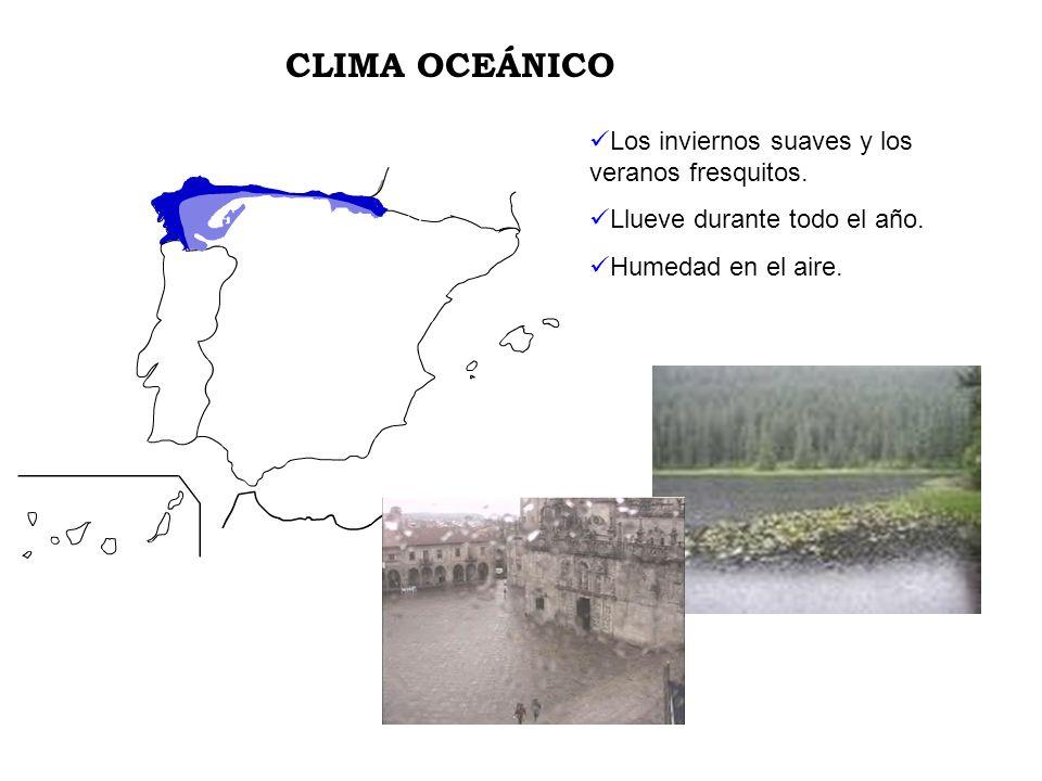 Los inviernos suaves y los veranos fresquitos. Llueve durante todo el año. Humedad en el aire. CLIMA OCEÁNICO