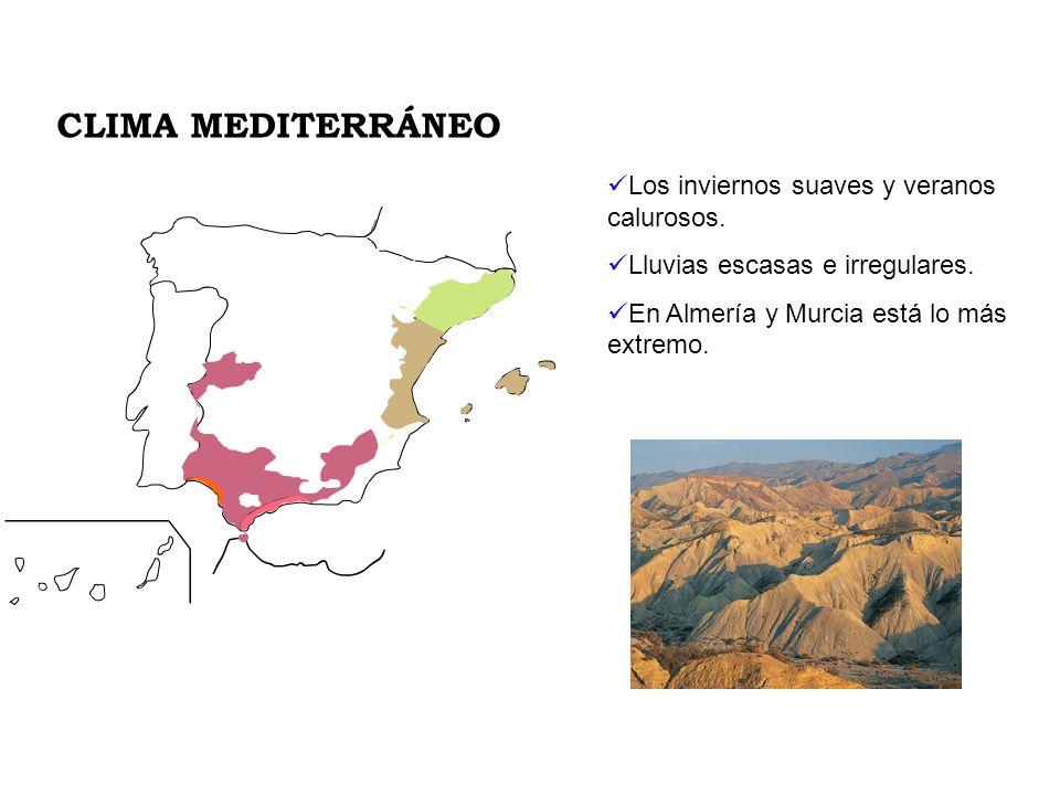 Los inviernos suaves y veranos calurosos. Lluvias escasas e irregulares. En Almería y Murcia está lo más extremo. CLIMA MEDITERRÁNEO