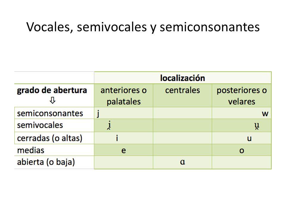 La sílaba Agrupación de sonidos estructurada en un ataque (al inicio), un núcleo o cima (en el centro) y una coda (al final).