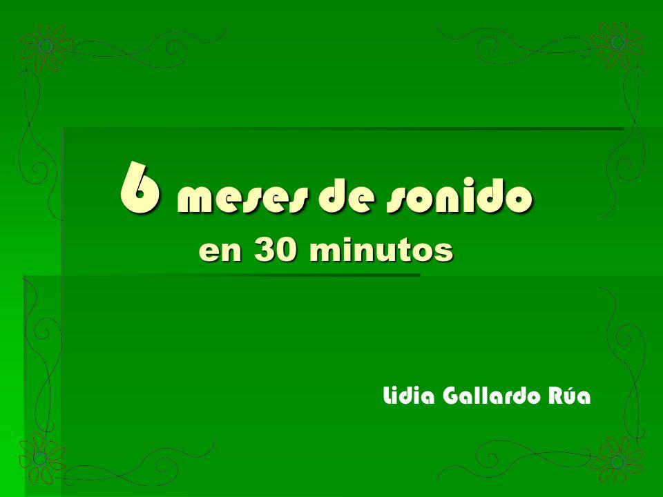 6 meses de sonido en 30 minutos Lidia Gallardo Rúa