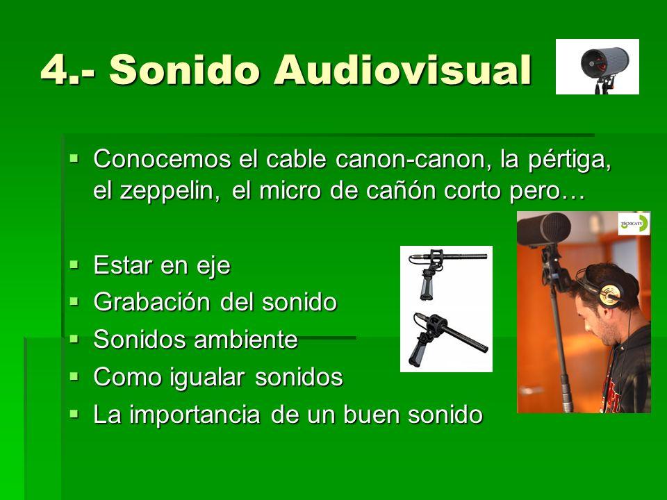 4.- Sonido Audiovisual Conocemos el cable canon-canon, la pértiga, el zeppelin, el micro de cañón corto pero… Conocemos el cable canon-canon, la pérti