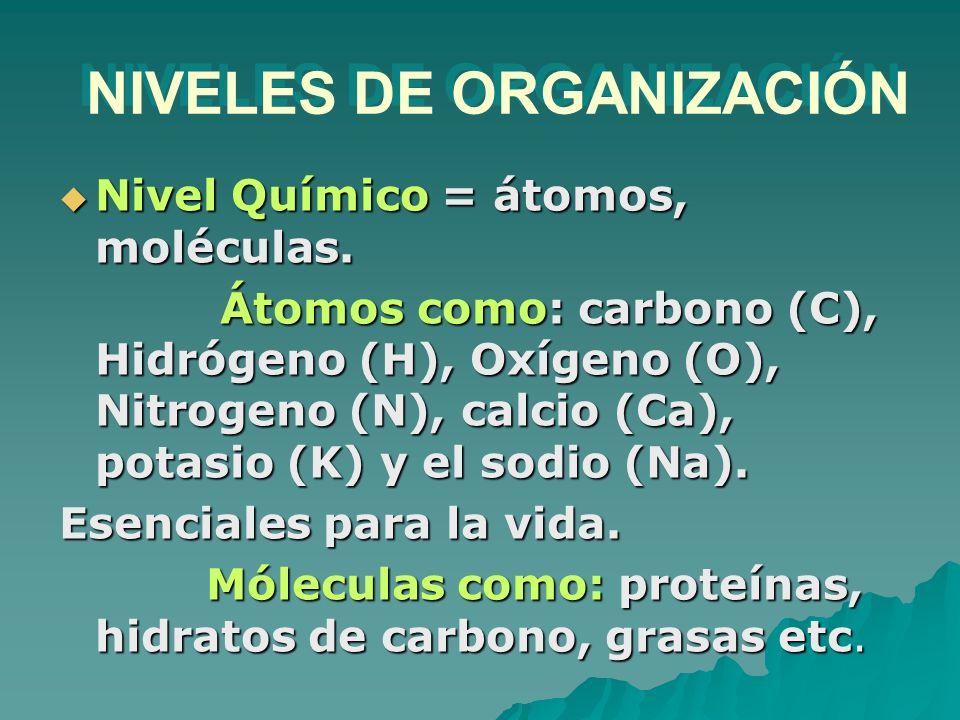 Nivel Químico = átomos, moléculas. Nivel Químico = átomos, moléculas. Átomos como: carbono (C), Hidrógeno (H), Oxígeno (O), Nitrogeno (N), calcio (Ca)