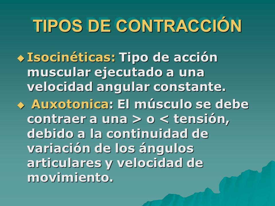 TIPOS DE CONTRACCIÓN Isocinéticas: Tipo de acción muscular ejecutado a una velocidad angular constante. Isocinéticas: Tipo de acción muscular ejecutad