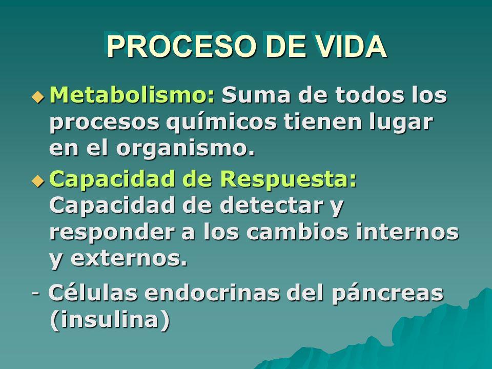 PROCESO DE VIDA Metabolismo: Suma de todos los procesos químicos tienen lugar en el organismo. Metabolismo: Suma de todos los procesos químicos tienen