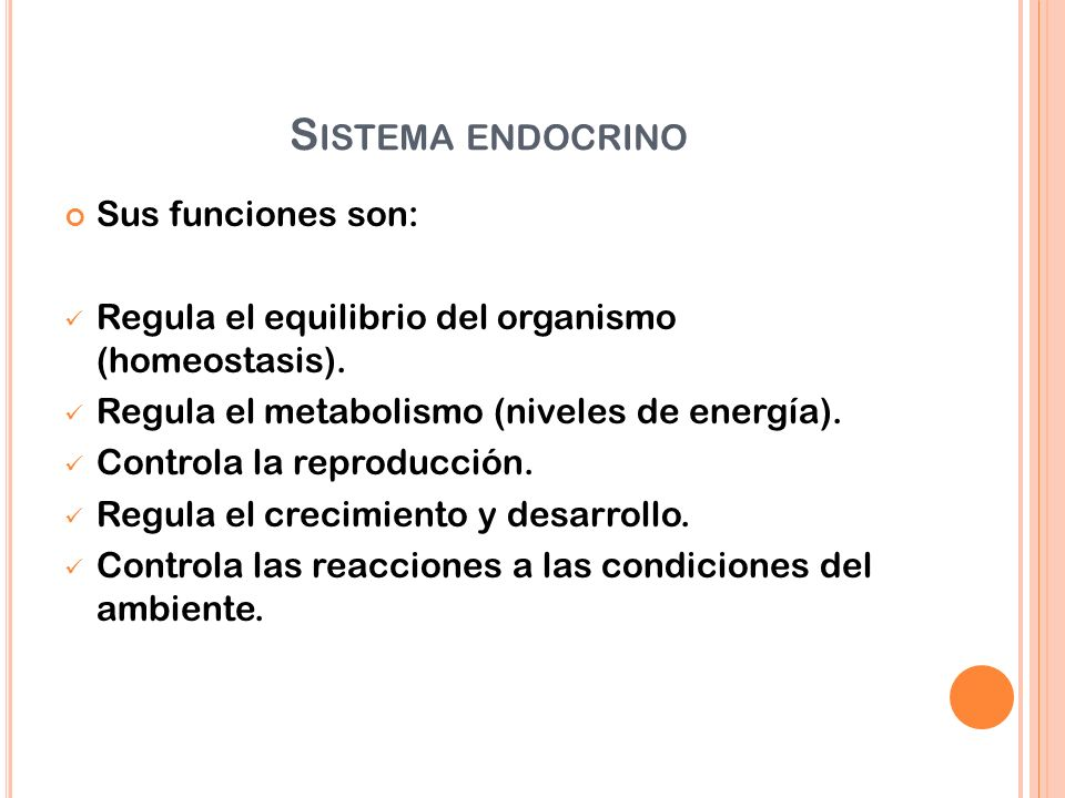 S ISTEMA ENDOCRINO Sus funciones son: Regula el equilibrio del organismo (homeostasis). Regula el metabolismo (niveles de energía). Controla la reprod