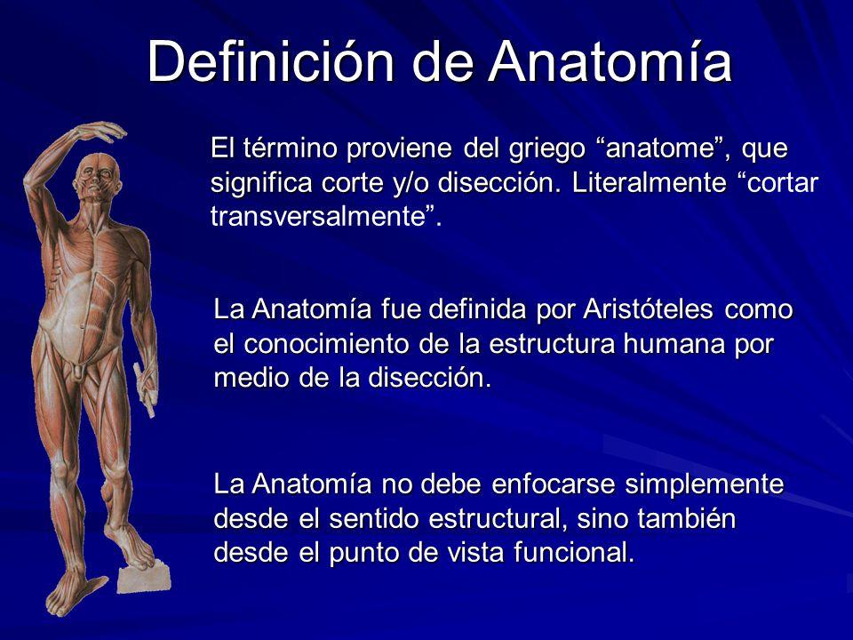El término proviene del griego anatome, que significa corte y/o disección. Literalmente El término proviene del griego anatome, que significa corte y/