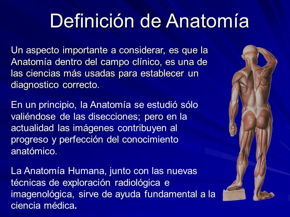 Un aspecto importante a considerar, es que la Anatomía dentro del campo clínico, es una de las ciencias más usadas para establecer un diagnosticocorre