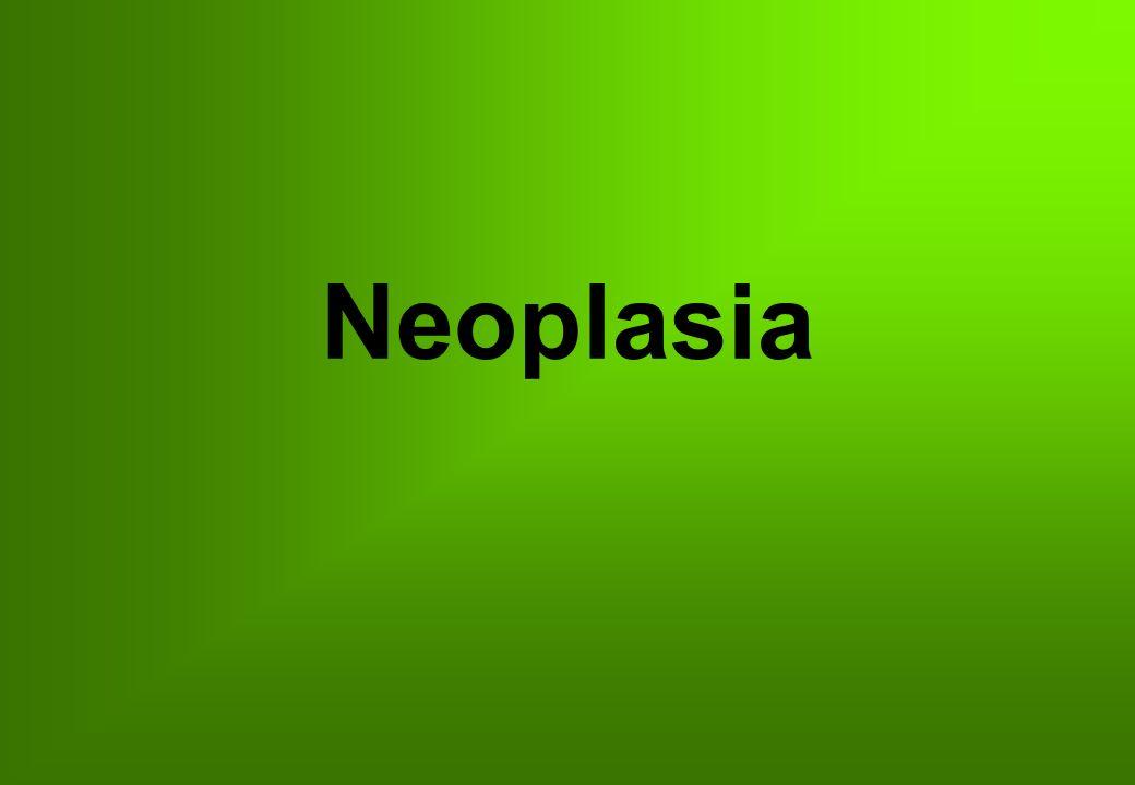 Efectos de las neoplasias Obstrucción Compresión Destrucción Ulceración Infarto Desnutrición Actividad funcional Obstrucción Compresión Destrucción Ulceración Infarto Desnutrición Actividad funcional