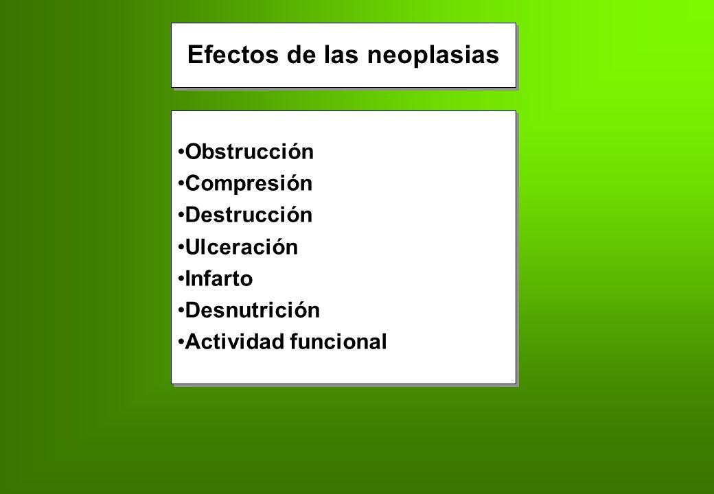 Efectos de las neoplasias Obstrucción Compresión Destrucción Ulceración Infarto Desnutrición Actividad funcional Obstrucción Compresión Destrucción Ul