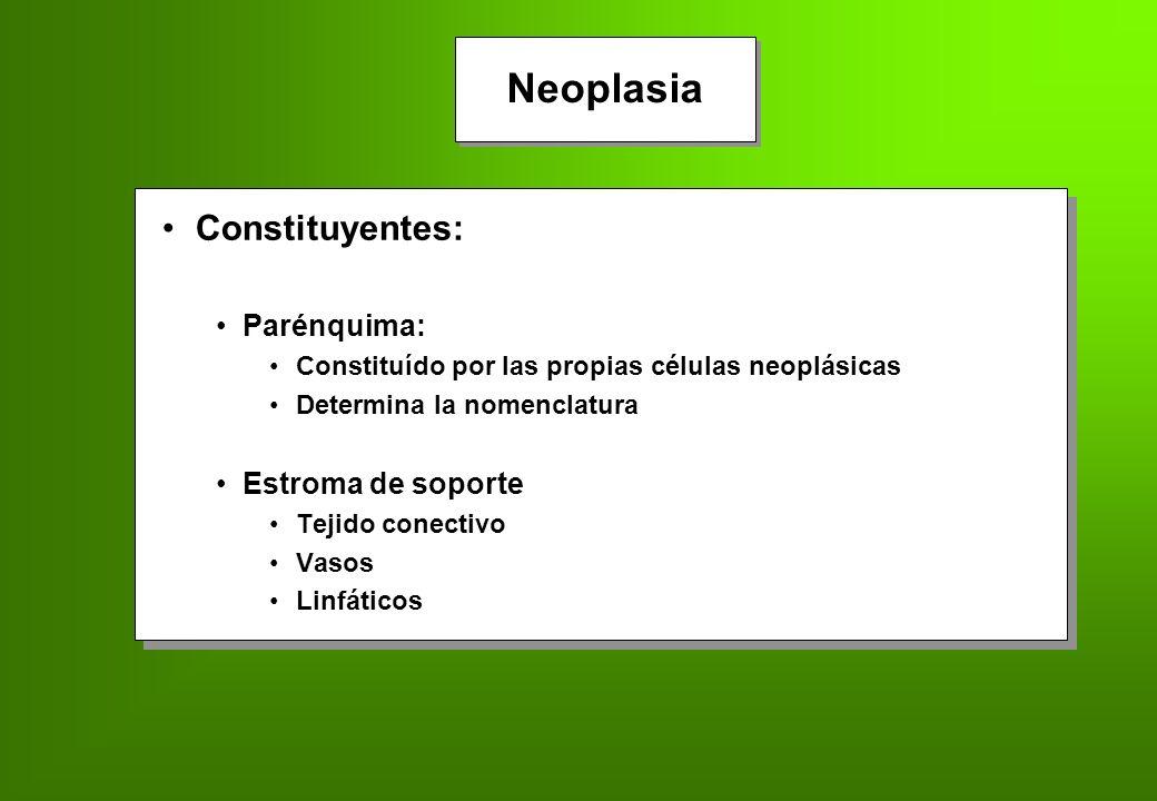 Nomenclatura de acuerdo al origen Neoplasia Nomenclatura de acuerdo al origen EpitelialEpitelial EpitelialEpitelial MesenquimalMesenquimal MesenquimalMesenquimal Benigno: -OMA Maligno: -CARCINOMA Maligno: -SARCOMA