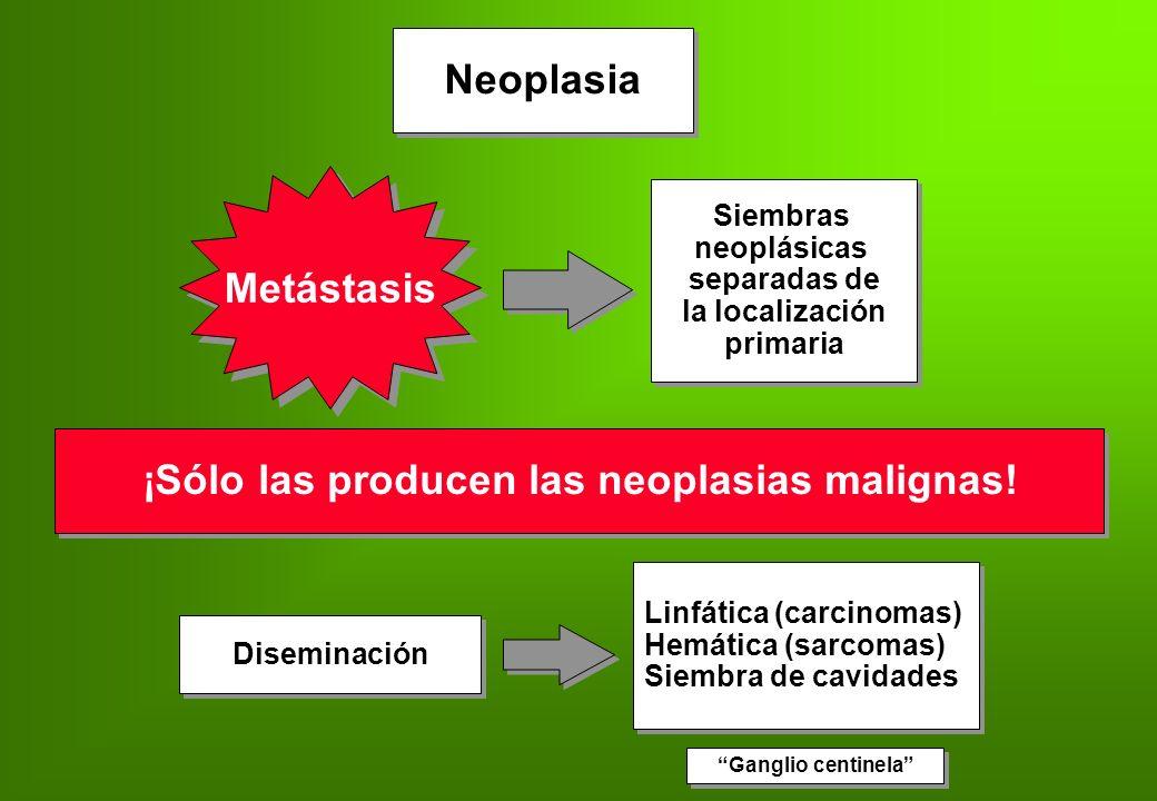 Neoplasia Metástasis Siembras neoplásicas separadas de la localización primaria Siembras neoplásicas separadas de la localización primaria Diseminació