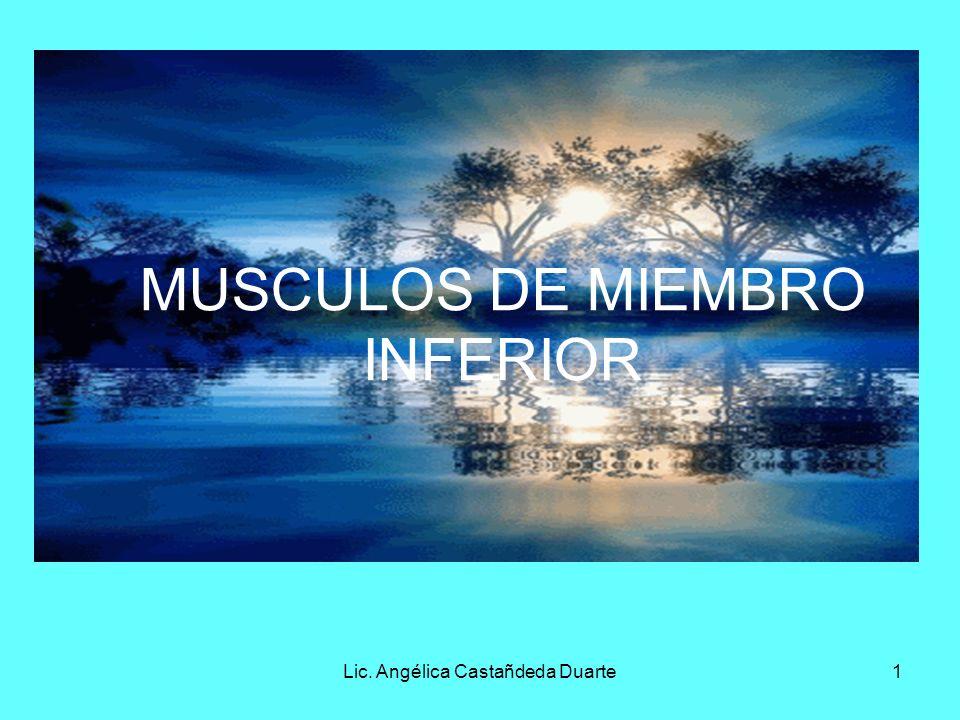 Lic. Angélica Castañdeda Duarte1 MUSCULOS DE MIEMBRO INFERIOR