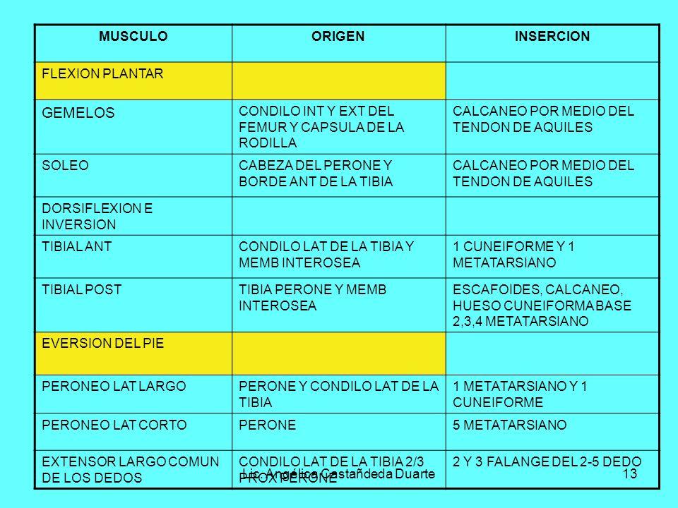 Lic. Angélica Castañdeda Duarte13 MUSCULOORIGENINSERCION FLEXION PLANTAR GEMELOS CONDILO INT Y EXT DEL FEMUR Y CAPSULA DE LA RODILLA CALCANEO POR MEDI