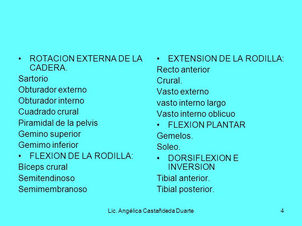 Lic. Angélica Castañdeda Duarte4 ROTACION EXTERNA DE LA CADERA. Sartorio Obturador externo Obturador interno Cuadrado crural Piramidal de la pelvis Ge
