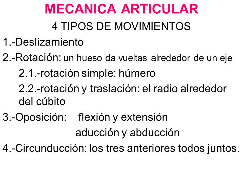 MECANICA ARTICULAR 4 TIPOS DE MOVIMIENTOS 1.-Deslizamiento 2.-Rotación: un hueso da vueltas alrededor de un eje 2.1.-rotación simple: húmero 2.2.-rota