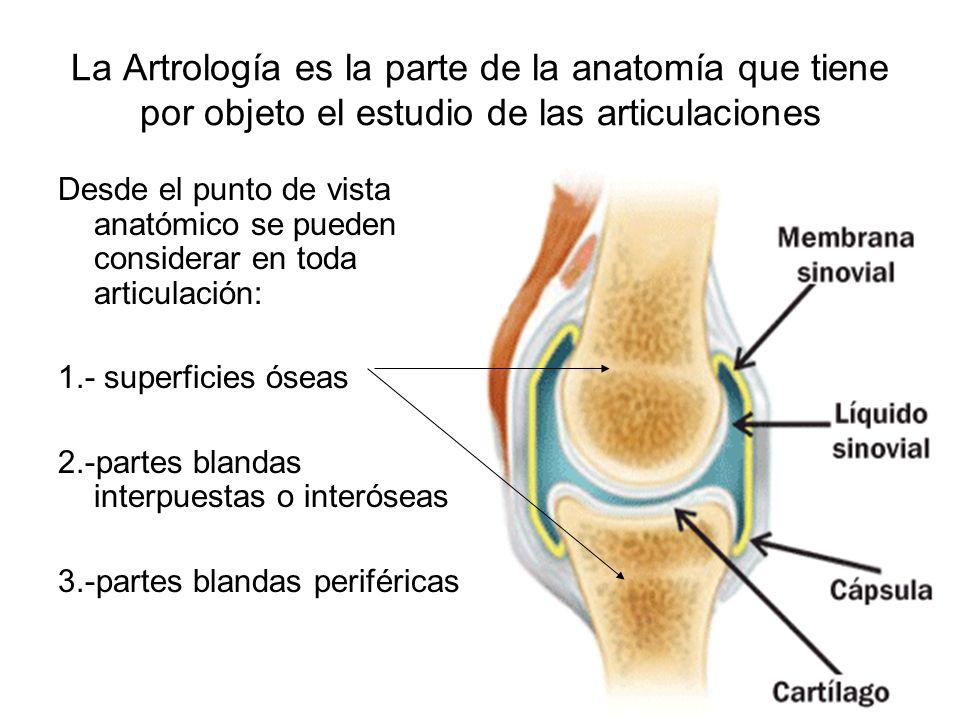 La Artrología es la parte de la anatomía que tiene por objeto el estudio de las articulaciones Desde el punto de vista anatómico se pueden considerar