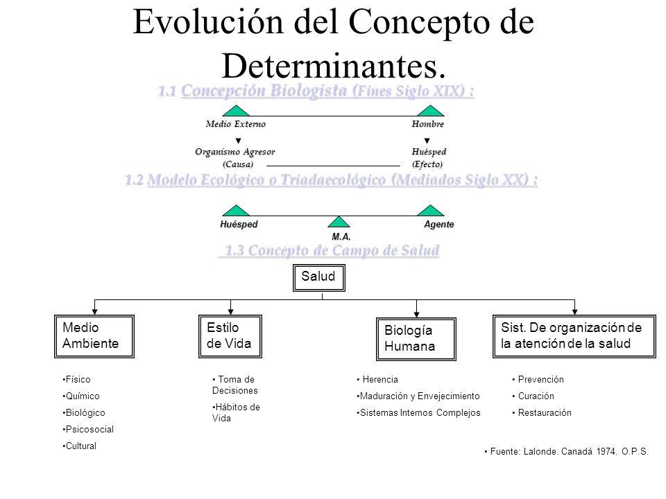 Evolución del Concepto de Determinantes. 1.1 Concepción Biologista ( Fines Siglo XIX ) : 1.1 Concepción Biologista ( Fines Siglo XIX ) : Medio Externo